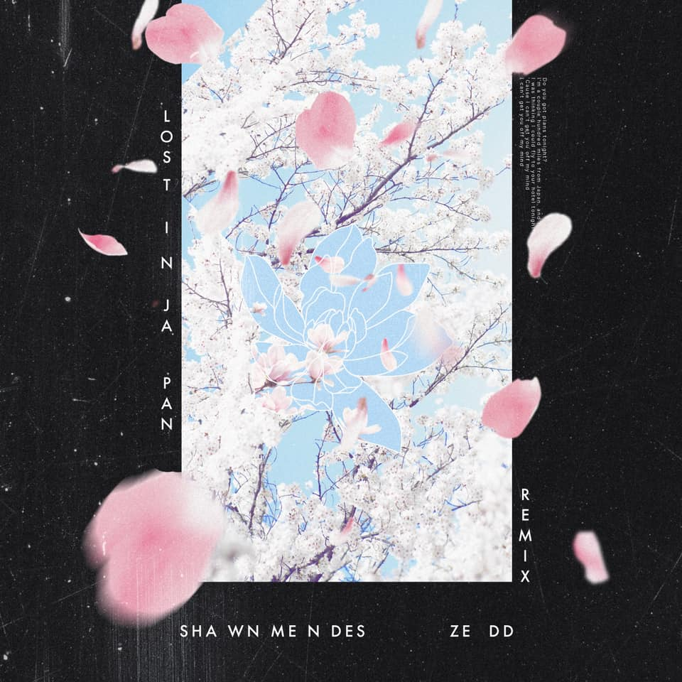 Shawn Mendes & Zedd - Lost In Japan
